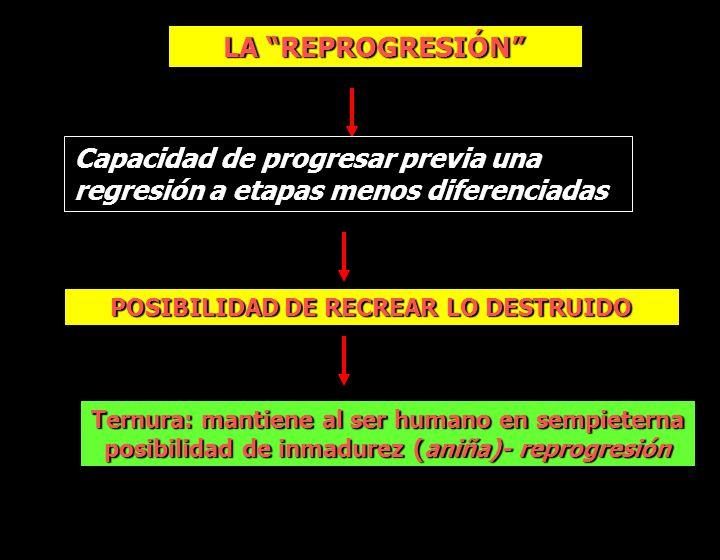 LA REPROGRESIÓN Capacidad de progresar previa una regresión a etapas menos diferenciadas POSIBILIDAD DE RECREAR LO DESTRUIDO Ternura: mantiene al ser