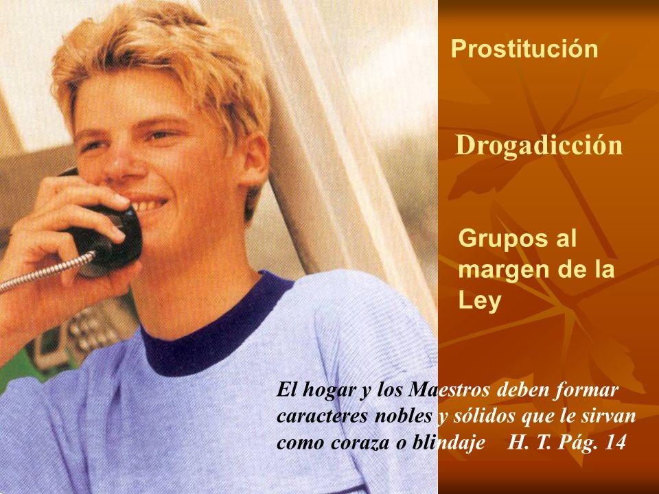 Drogadicción Grupos al margen de la Ley Prostitución El hogar y los Maestros deben formar caracteres nobles y sólidos que le sirvan como coraza o blin