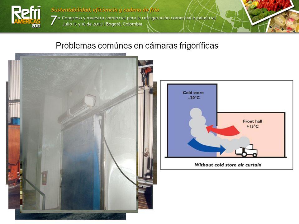 13/07/10 Problemas comúnes en cámaras frigoríficas