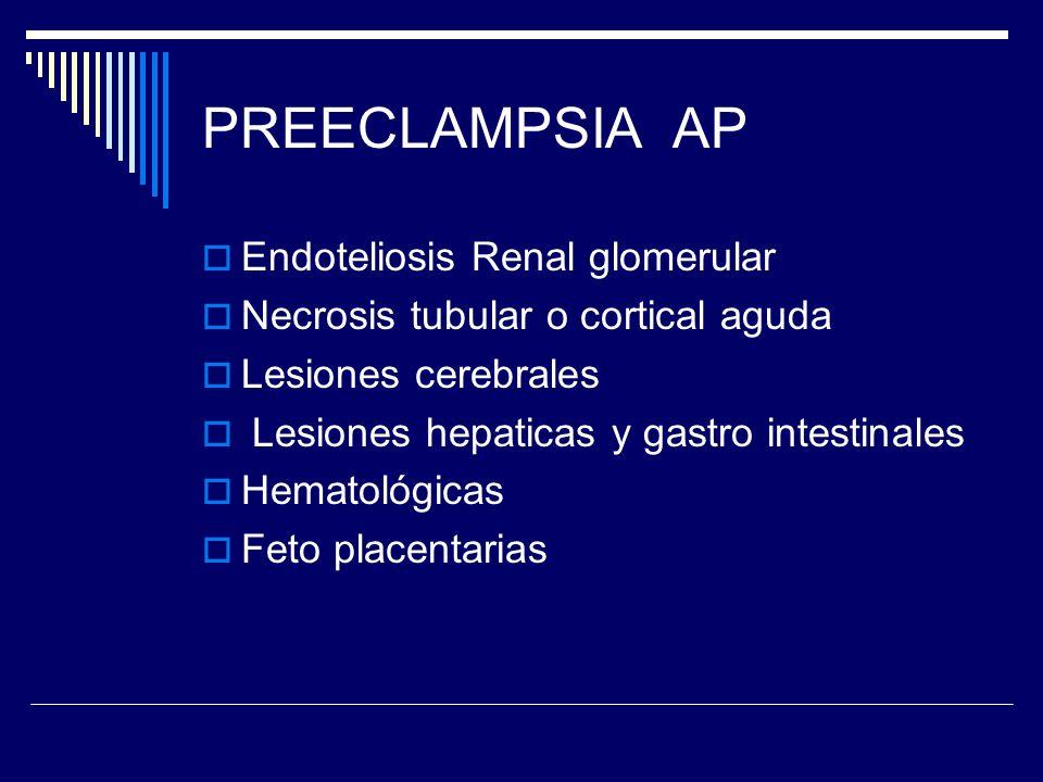 PREECLAMPSIA AP Endoteliosis Renal glomerular Necrosis tubular o cortical aguda Lesiones cerebrales Lesiones hepaticas y gastro intestinales Hematológ