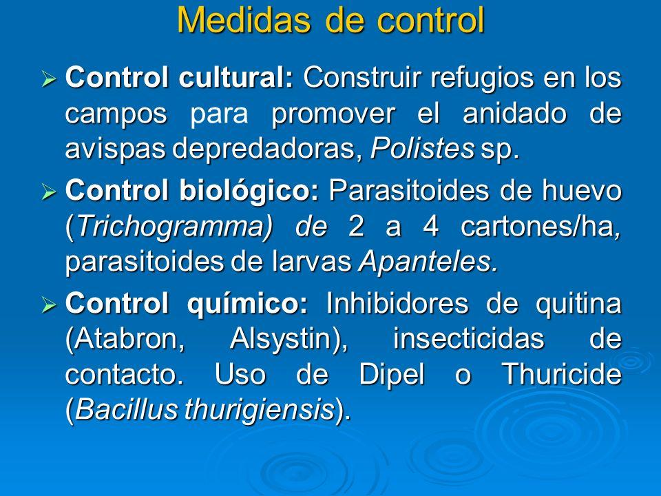 Medidas de control Control cultural: Construir refugios en los campos promover el anidado de avispas depredadoras, Polistes sp. Control cultural: Cons