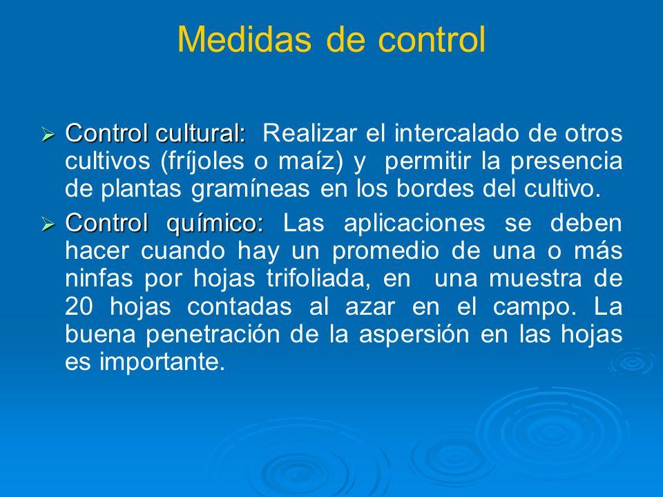 Medidas de control Control cultural: Control cultural: Realizar el intercalado de otros cultivos (fríjoles o maíz) y permitir la presencia de plantas