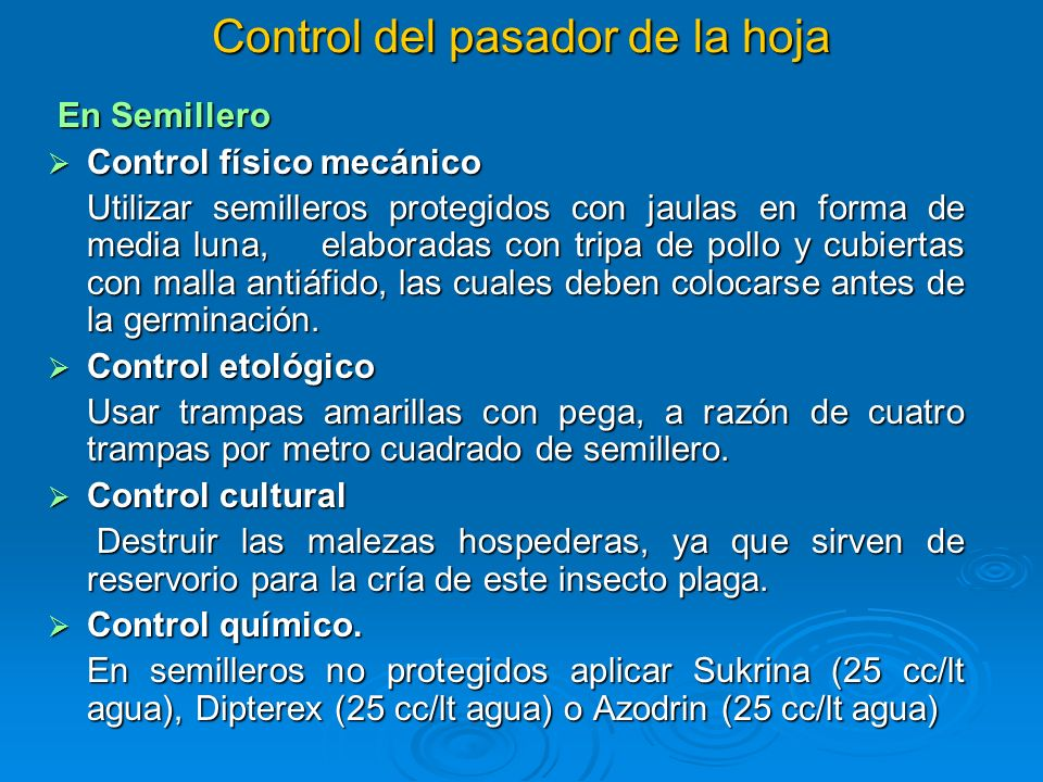 Control del pasador de la hoja En Semillero En Semillero Control físico mecánico Control físico mecánico Utilizar semilleros protegidos con jaulas en