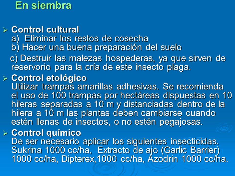 En siembra En siembra Control cultural a) Eliminar los restos de cosecha b) Hacer una buena preparación del suelo Control cultural a) Eliminar los res