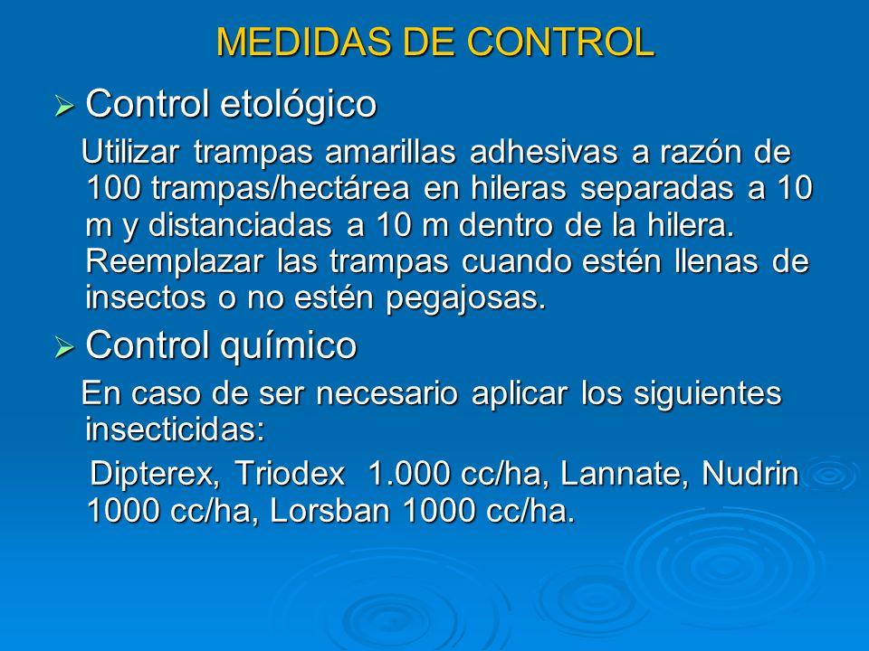 MEDIDAS DE CONTROL Control etológico Control etológico Utilizar trampas amarillas adhesivas a razón de 100 trampas/hectárea en hileras separadas a 10