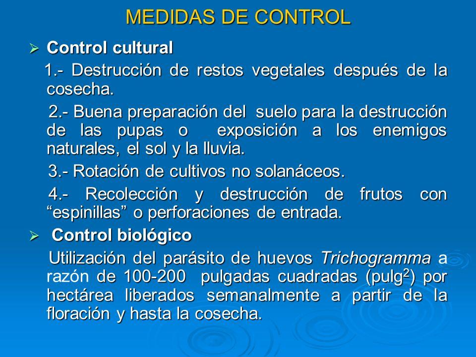 MEDIDAS DE CONTROL Control cultural Control cultural 1.- Destrucción de restos vegetales después de la cosecha. 1.- Destrucción de restos vegetales de