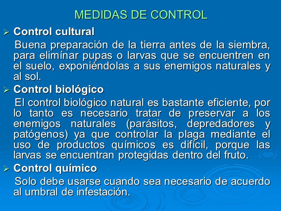 MEDIDAS DE CONTROL Control cultural Control cultural Buena preparación de la tierra antes de la siembra, para elimínar pupas o larvas que se encuentre