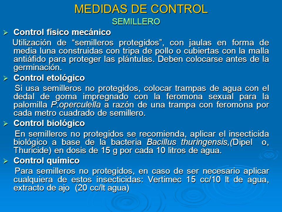 MEDIDAS DE CONTROL SEMILLERO Control físico mecánico Control físico mecánico Utilización de semilleros protegidos, con jaulas en forma de media luna c
