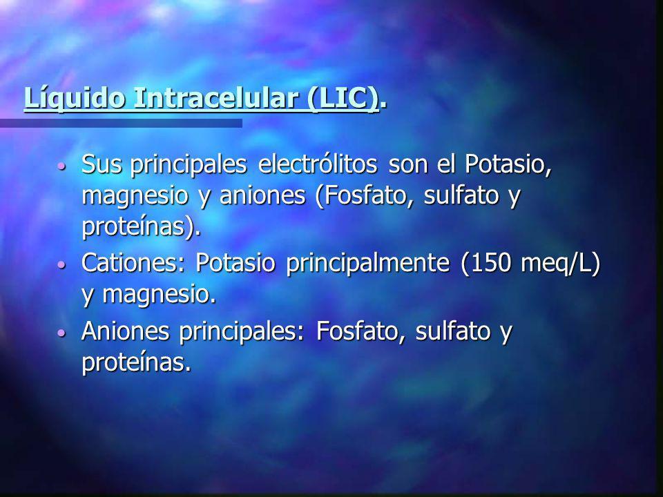 Líquido Intracelular (LIC). Sus principales electrólitos son el Potasio, magnesio y aniones (Fosfato, sulfato y proteínas). Sus principales electrólit