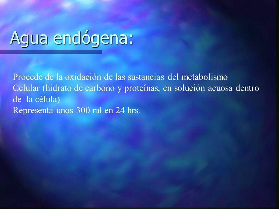 Agua endógena: Procede de la oxidación de las sustancias del metabolismo Celular (hidrato de carbono y proteínas, en solución acuosa dentro de la célu