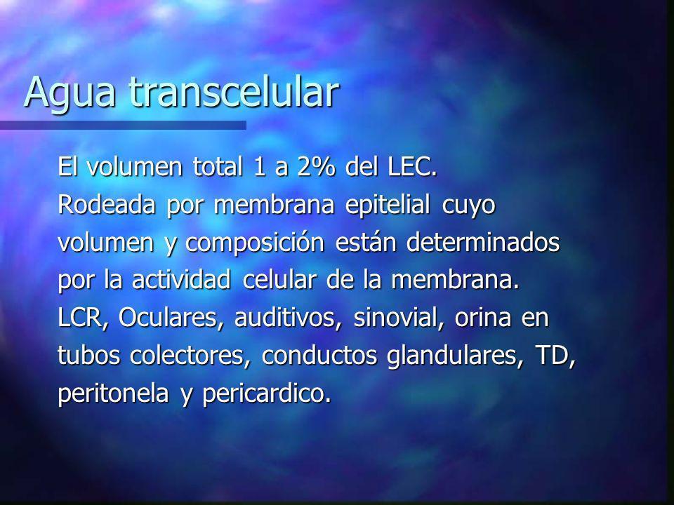 Agua transcelular El volumen total 1 a 2% del LEC. Rodeada por membrana epitelial cuyo volumen y composición están determinados por la actividad celul