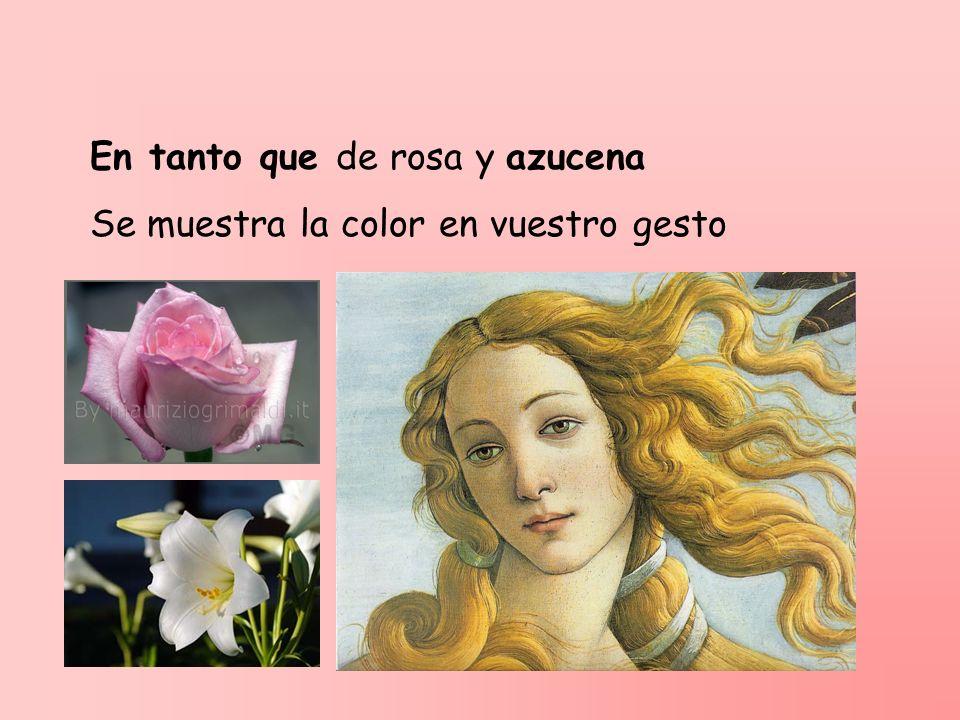 En tanto que de rosa y azucena Se muestra la color en vuestro gesto