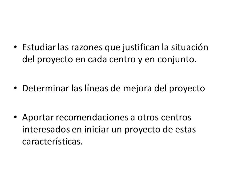 Estudiar las razones que justifican la situación del proyecto en cada centro y en conjunto. Determinar las líneas de mejora del proyecto Aportar recom
