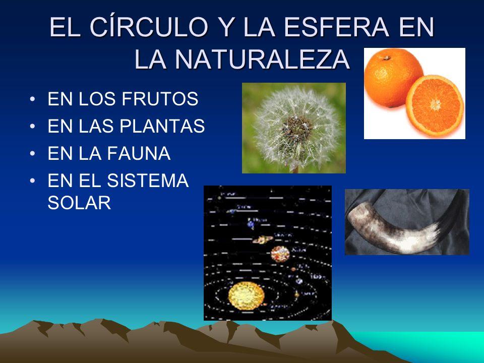 EL CÍRCULO Y LA ESFERA EN LA NATURALEZA EN LOS FRUTOS EN LAS PLANTAS EN LA FAUNA EN EL SISTEMA SOLAR