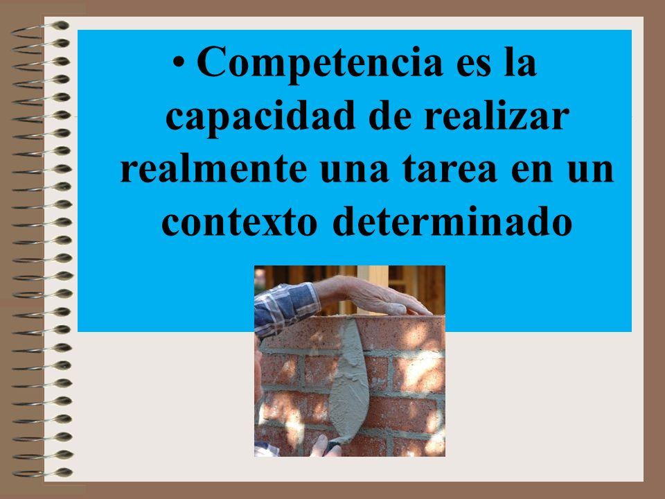 La competencia es un agregado de elementos diferenciados.
