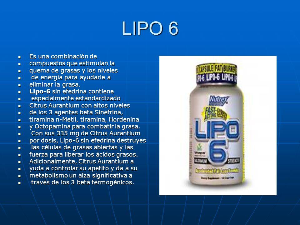 LIPO 6 Es una combinación de Es una combinación de compuestos que estimulan la compuestos que estimulan la quema de grasas y los niveles quema de gras