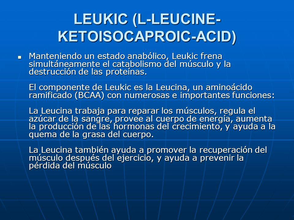 LEUKIC (L-LEUCINE- KETOISOCAPROIC-ACID) Manteniendo un estado anabólico, Leukic frena simultáneamente el catabolismo del músculo y la destrucción de l
