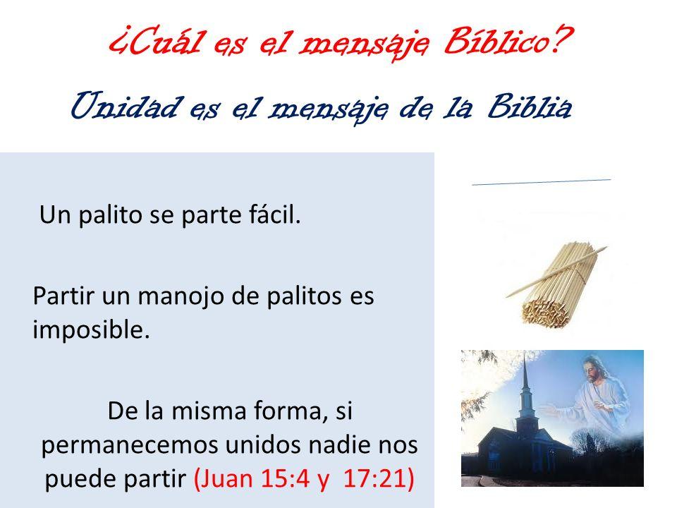 ¿Cuál es el mensaje Bíblico? Un palito se parte fácil. Partir un manojo de palitos es imposible. De la misma forma, si permanecemos unidos nadie nos p