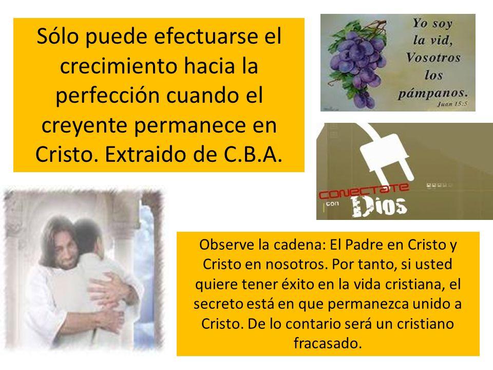 Sólo puede efectuarse el crecimiento hacia la perfección cuando el creyente permanece en Cristo. Extraido de C.B.A. Observe la cadena: El Padre en Cri