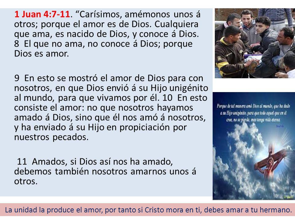 1 Juan 4:7-11. Carísimos, amémonos unos á otros; porque el amor es de Dios. Cualquiera que ama, es nacido de Dios, y conoce á Dios. 8 El que no ama, n