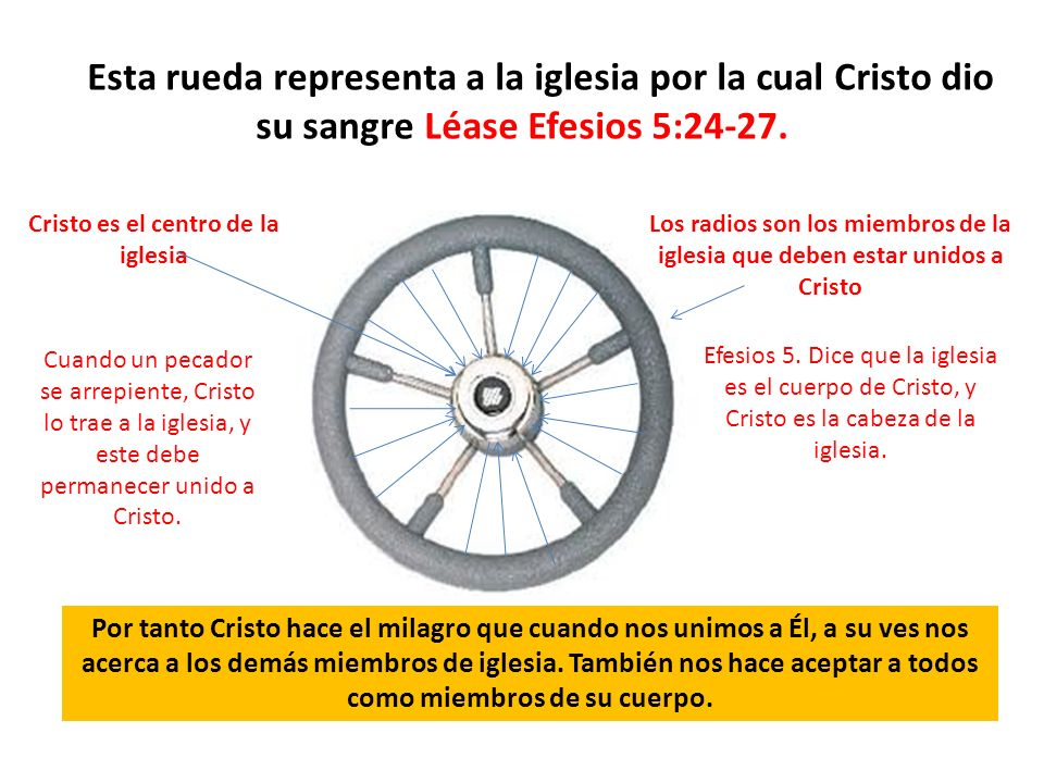 Esta rueda representa a la iglesia por la cual Cristo dio su sangre Léase Efesios 5:24-27. Cristo es el centro de la iglesia Los radios son los miembr