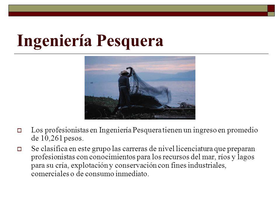 Ingeniería Pesquera Los profesionistas en Ingeniería Pesquera tienen un ingreso en promedio de 10,261 pesos. Se clasifica en este grupo las carreras d