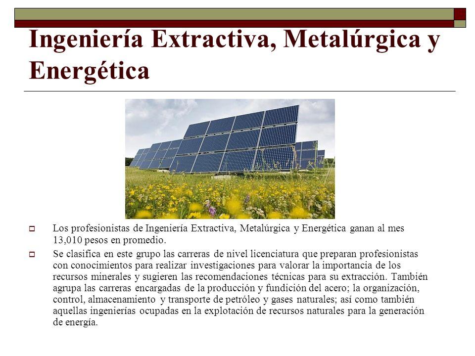 Ingeniería Extractiva, Metalúrgica y Energética Los profesionistas de Ingeniería Extractiva, Metalúrgica y Energética ganan al mes 13,010 pesos en pro