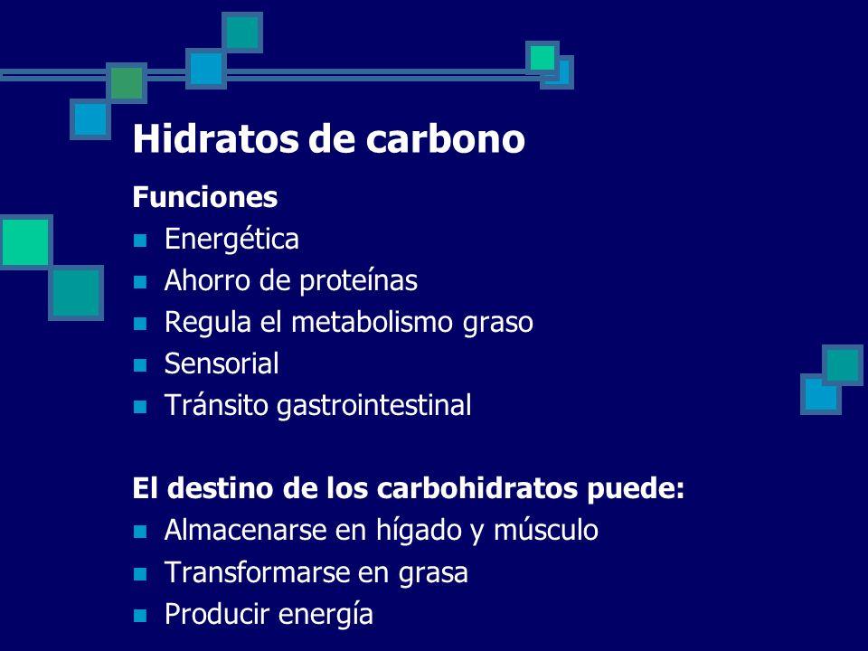 Hidratos de carbono Funciones Energética Ahorro de proteínas Regula el metabolismo graso Sensorial Tránsito gastrointestinal El destino de los carbohidratos puede: Almacenarse en hígado y músculo Transformarse en grasa Producir energía