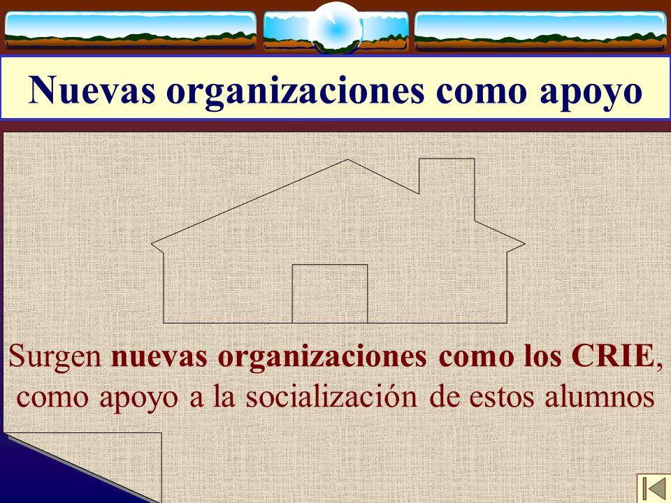 José Luis Bernal Agudo Universidad de Zaragoza 17 Nuevas organizaciones como apoyo Surgen nuevas organizaciones como los CRIE, como apoyo a la sociali
