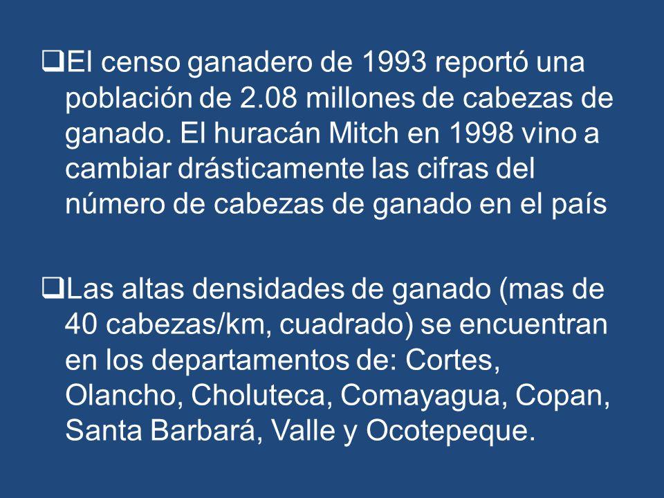 El censo ganadero de 1993 reportó una población de 2.08 millones de cabezas de ganado. El huracán Mitch en 1998 vino a cambiar drásticamente las cifra