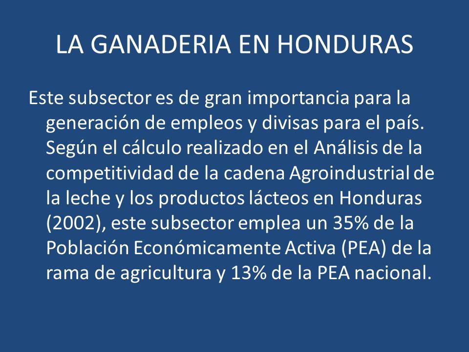 LA GANADERIA EN HONDURAS Este subsector es de gran importancia para la generación de empleos y divisas para el país. Según el cálculo realizado en el