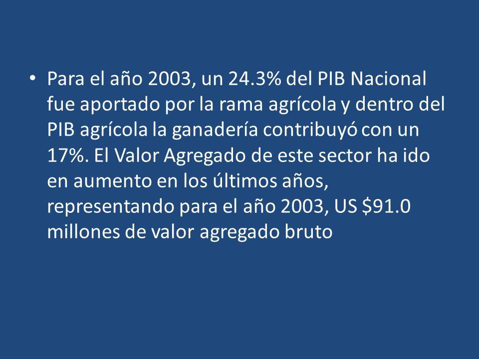 Para el año 2003, un 24.3% del PIB Nacional fue aportado por la rama agrícola y dentro del PIB agrícola la ganadería contribuyó con un 17%. El Valor A