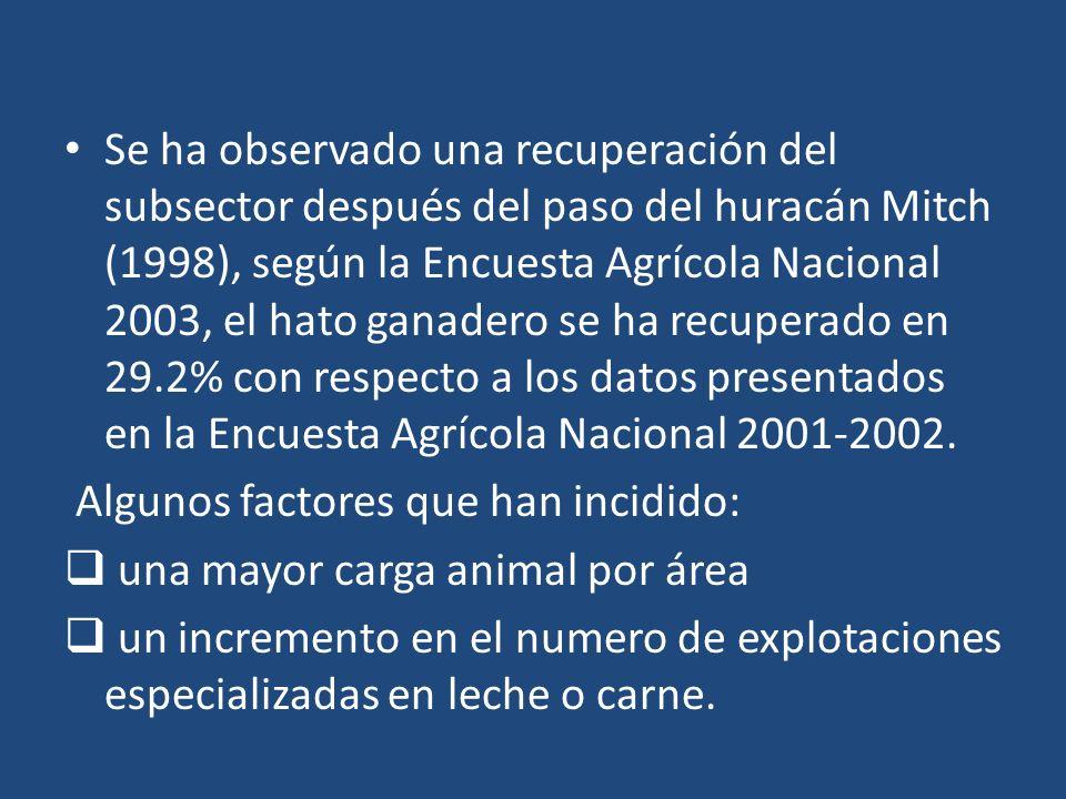 Se ha observado una recuperación del subsector después del paso del huracán Mitch (1998), según la Encuesta Agrícola Nacional 2003, el hato ganadero s