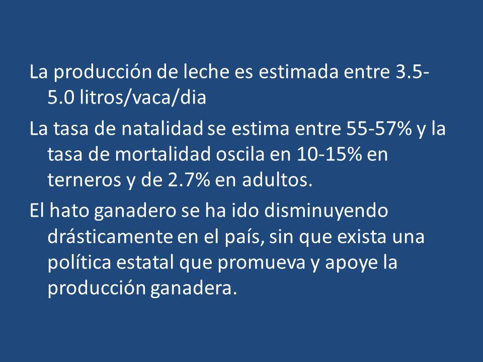La producción de leche es estimada entre 3.5- 5.0 litros/vaca/dia La tasa de natalidad se estima entre 55-57% y la tasa de mortalidad oscila en 10-15%