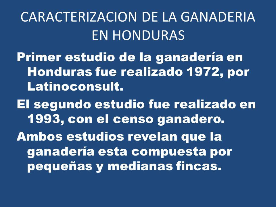 CARACTERIZACION DE LA GANADERIA EN HONDURAS Primer estudio de la ganadería en Honduras fue realizado 1972, por Latinoconsult. El segundo estudio fue r