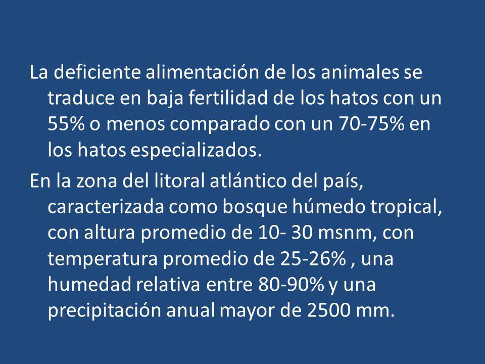 La deficiente alimentación de los animales se traduce en baja fertilidad de los hatos con un 55% o menos comparado con un 70-75% en los hatos especial