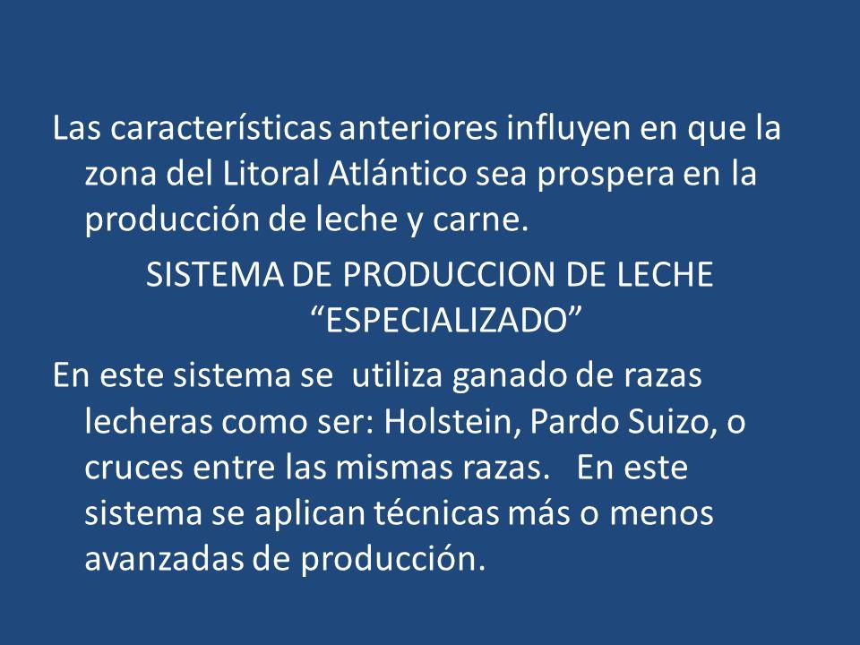 Las características anteriores influyen en que la zona del Litoral Atlántico sea prospera en la producción de leche y carne. SISTEMA DE PRODUCCION DE