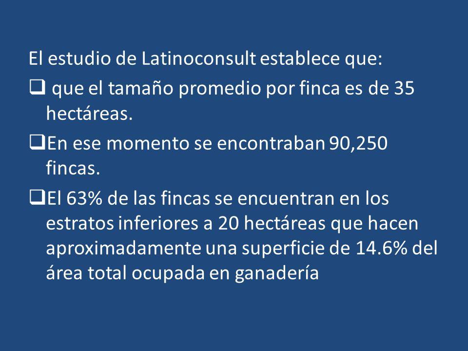 El estudio de Latinoconsult establece que: que el tamaño promedio por finca es de 35 hectáreas. En ese momento se encontraban 90,250 fincas. El 63% de