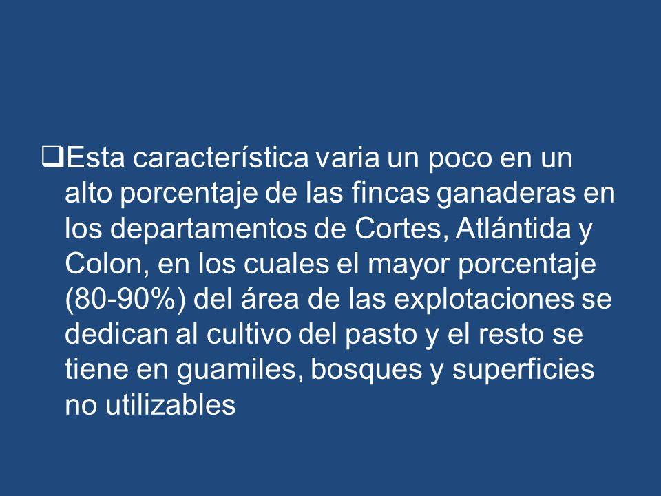 Esta característica varia un poco en un alto porcentaje de las fincas ganaderas en los departamentos de Cortes, Atlántida y Colon, en los cuales el ma