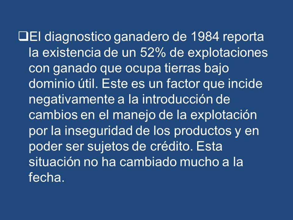 El diagnostico ganadero de 1984 reporta la existencia de un 52% de explotaciones con ganado que ocupa tierras bajo dominio útil. Este es un factor que