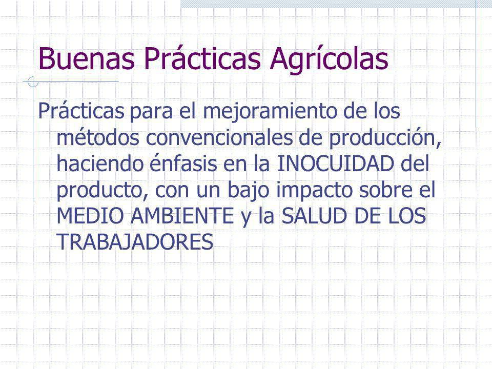 ¿Para qué Sirven las Buenas Prácticas Agrícolas y de Manufactura? Reducción del riesgo en la toma de decisiones, mejor gestión. Aumento de la competit