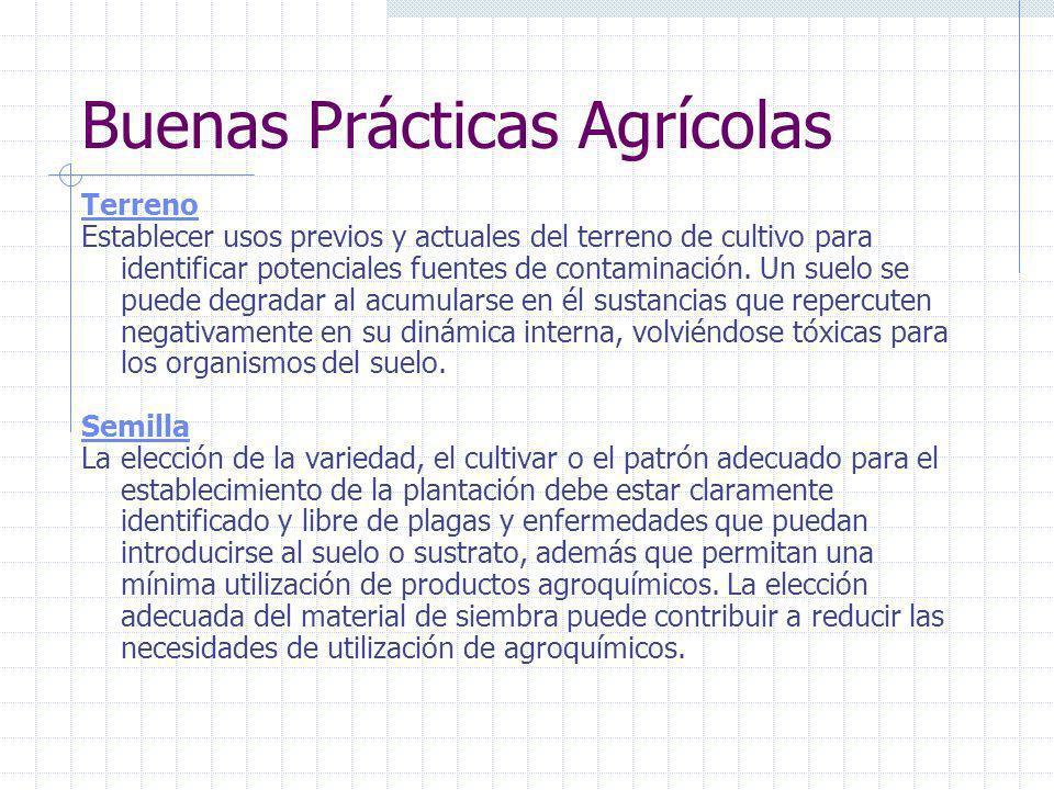 Buenas Prácticas Agrícolas Prácticas para el mejoramiento de los métodos convencionales de producción, haciendo énfasis en la INOCUIDAD del producto,