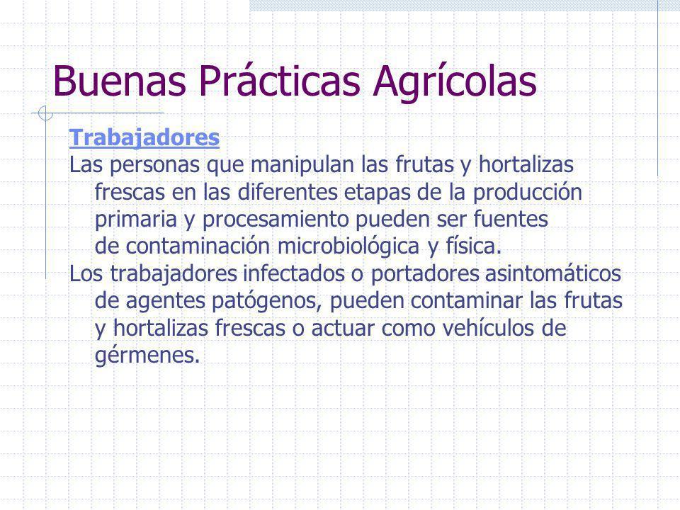Buenas Prácticas Agrícolas Equipo de fumigación La utilización del equipo adecuado de fumigación puede contribuir a reducir el uso de plaguicidas y di