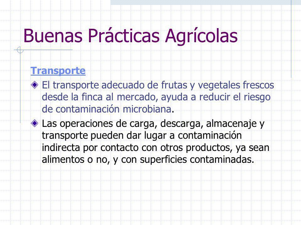 Buenas Prácticas Agrícolas Acopio en Campo La contaminación microbiana directa o indirecta de frutas y vegetales antes y durante las actividades de re