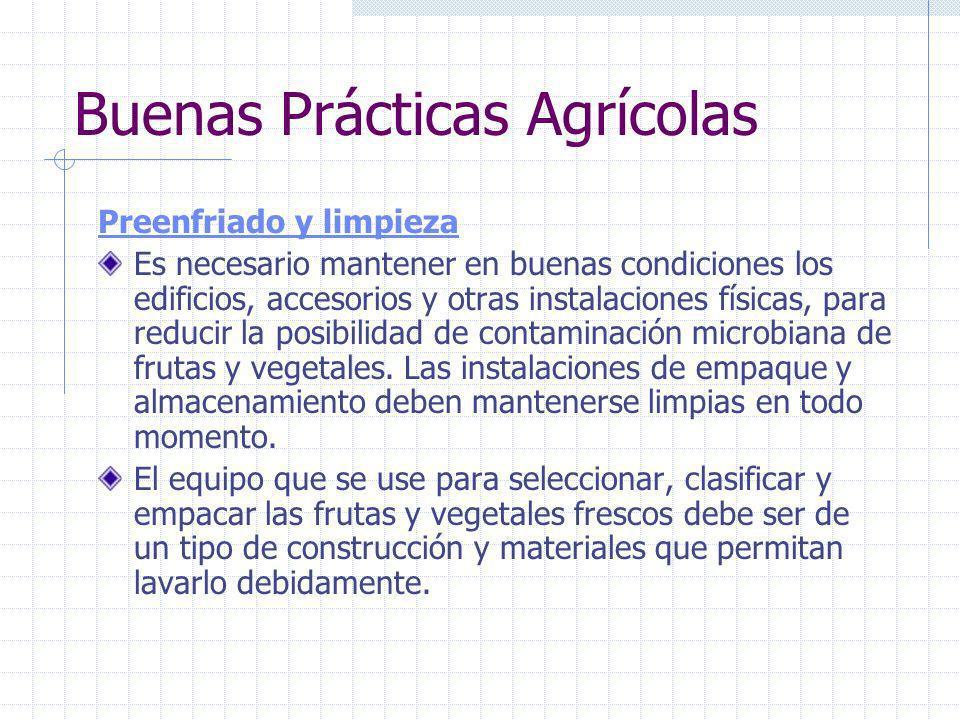 Buenas Prácticas Agrícolas Transporte El transporte adecuado de frutas y vegetales frescos desde la finca al mercado, ayuda a reducir el riesgo de con
