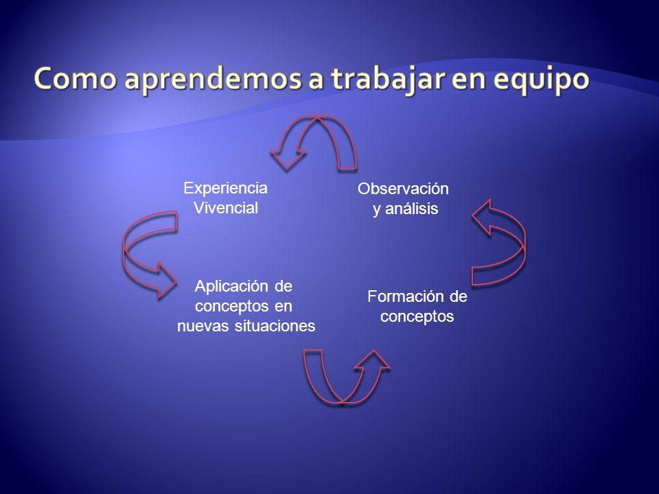 Experiencia Vivencial Observación y análisis Aplicación de conceptos en nuevas situaciones Formación de conceptos