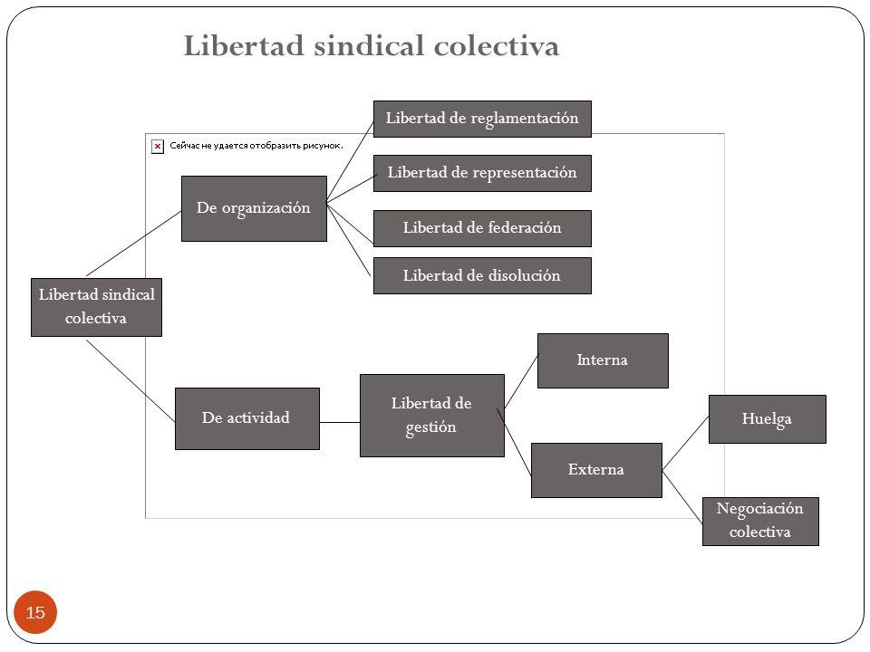 15 Libertad sindical colectiva De organización De actividad Libertad de reglamentación Libertad de disolución Libertad de representación Libertad de f