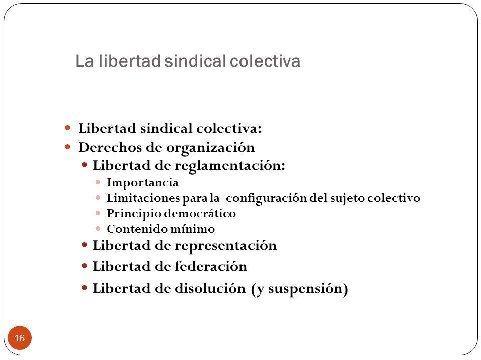 16 La libertad sindical colectiva Libertad sindical colectiva: Derechos de organización Libertad de reglamentación: Importancia Limitaciones para la c