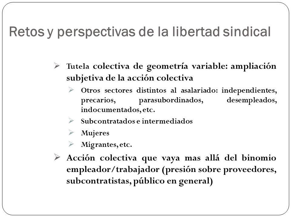 Retos y perspectivas de la libertad sindical Tutela colectiva de geometría variable: ampliación subjetiva de la acción colectiva Otros sectores distin