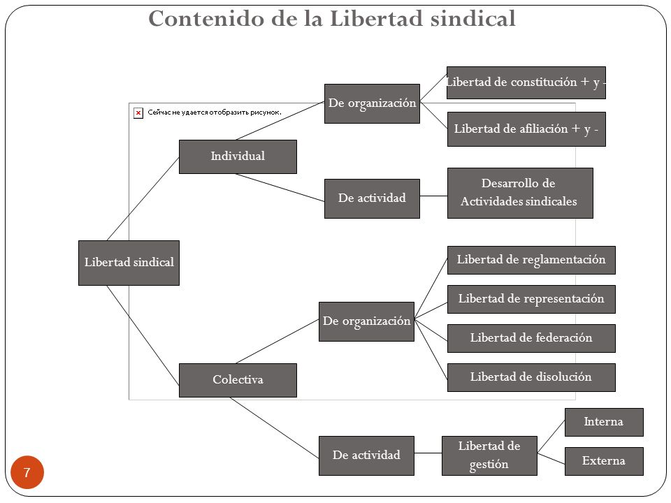 7 Libertad sindical De organización De actividad De organización De actividad Colectiva Individual Libertad de constitución + y - Libertad de afiliaci